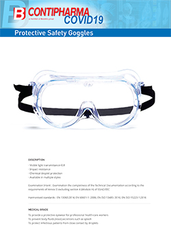 goggle technical sheet