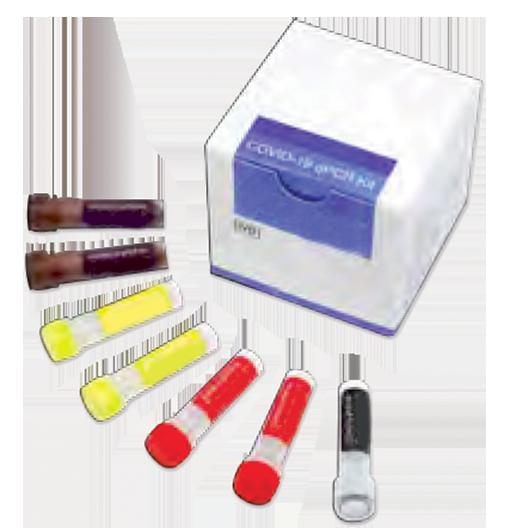 Kit PCR